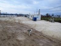 Κατσικάς από την αρχή... Ετοιμασίες για την επαναλειτουργία του Κέντρου Προσφύγων - : IoanninaVoice.gr