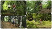 ΜΕΤΣΟΒΟ: Έναρξη εγγραφών του Ursa Trail 2018,την Τετάρτη 21 Μαρτίου! - : IoanninaVoice.gr